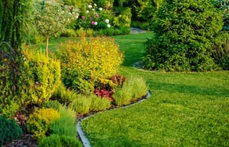 איך תעצבו את הגינה בלי גנן